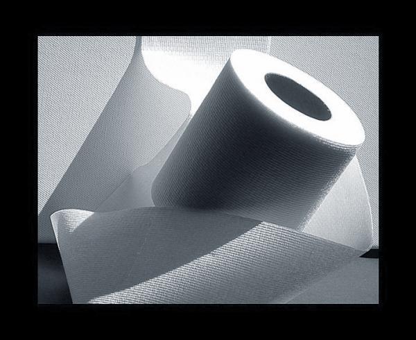 Rotolo-di-carta-igienica.jpg